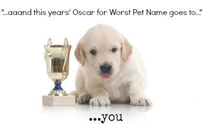 Great dog name