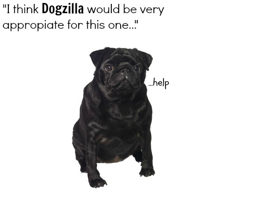 A cute dog, wrong name.