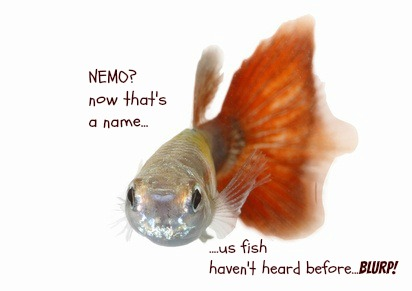 17 funny fish names you wish you had thought of yourself
