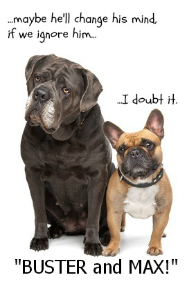 A funny image of dogs