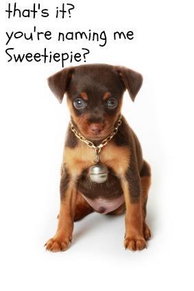 top dog names